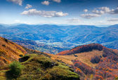 Summer in the Carpathian mountains — Stockfoto