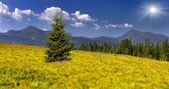 Two mountains peak in summer — Stock Photo