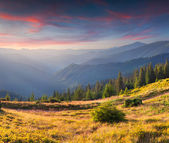 Autumn landscape in mountains. — Stock Photo
