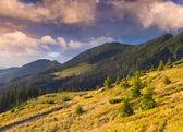 在山中的秋景 — 图库照片