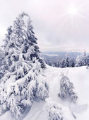 Snowstorm in the mountains — Stock Photo
