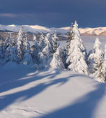 Winter landscape in the mountain — Stock Photo