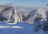 Zimowy poranek w górach — Zdjęcie stockowe