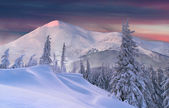 Winter sunset in the mountains — Stock Photo