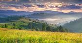 Zomer zonsopgang in de bergen — Stockfoto