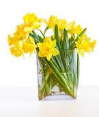 Narcisos en un florero de cristal — Foto de Stock