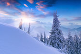 Beautiful winter sunset in the mountains.  — Stock Photo