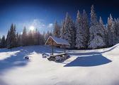 Winter fairy tale after heavy snowfall  — Stock Photo