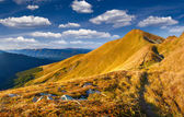 Autumn landscape in the Carpathian mountains. — Stockfoto