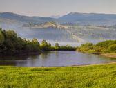 Letní ráno na horské řece. — Stock fotografie