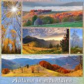 Autumn landscapes of mountains — Stock Photo