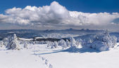 Winter landscape in Carpathian mountains — Stock Photo