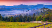 Foggy morning in the Carpathian mountains. — Stockfoto