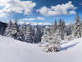 Zimní ráno v horách — Stock fotografie