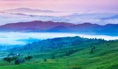 Foggy summer morning in Carpathian mountains. — Stock Photo