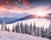 Winter zonsopgang in de bergen — Stockfoto