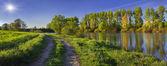 Summer morning on the river — Stockfoto