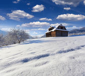 Old house in the Carpathian mountain village — Stock Photo
