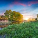 Summer landscape on the lake. — Stock Photo #50890079
