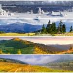 Set of the 4 seasons landscape — Stock Photo #50890147
