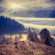 Foggy autumn morning in the mountains. — Stock Photo #50891207