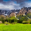 Spring landscape in the Swiss Alps. — Stock Photo #50891215