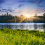 Summer landscape on the lake. — Stock Photo #50891461