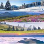 Set of the 4 seasons landscape — Stock Photo #50891905