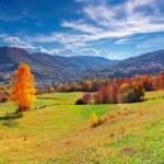Autumn panorama of the mountain village — Stock Photo #50892349