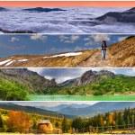 Set of the 4 seasons landscape — Stock Photo #50893241