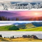 Set of the 4 seasons landscape — Stock Photo #50894863