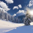 Winter landscape with snow covered trees. — Stock Photo #50895005