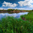 River in the summer cloudy day — Stock Photo #50895225