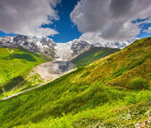 Tetnuldi buzulu eteklerinde, alpine meadows — Stok fotoğraf