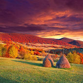Autumn landscape in the mountains village. — Stock Photo