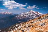 Voorjaar in de bergen — Stockfoto
