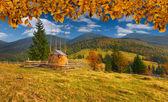 Herfst landschap in de karpaten — Stockfoto