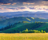 Colorful summer sunrise in the mountains. — Stock Photo