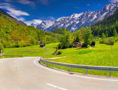 Alpine meadows in the Alps, Switzerland.  — Stock Photo