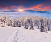 Winter sunrise in mountains — Stock Photo