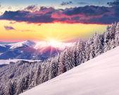 Winter zonsopgang in bergen. — Stockfoto