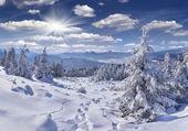 Deep snow in the Carpathian mountains — ストック写真