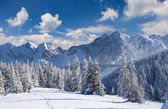 Winterochtend in de bergen — Stockfoto