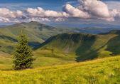 在山的夏天风景 — 图库照片