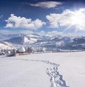 Winter morning in the Carpathian village — Foto de Stock
