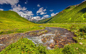 Mountain river at the foot of Mt. Shkhara — Stock fotografie