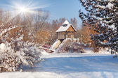 Snow-covered trees and gazebo — Stock Photo