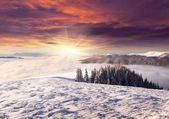Sunrise among sea of fog in winter mountains — Stock Photo