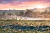 Sunrise on outskirts of city — Stock Photo