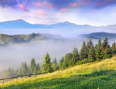 Spring landscape in the mountains — Stock Photo